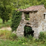stilllife___Dilapidated House___Buzet, Croatia.